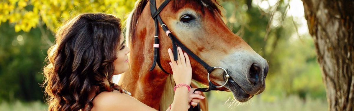 Pferdefütterung – auf das richtige Maß kommt es an